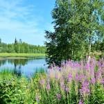 Solanderleden sjö