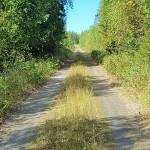 Solanderleden åkerbärsröd led landsväg