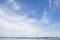 170617-gsys-boat-race-42