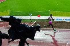 SM i friidrott, Isabellah Andersson, ensam med en TV-kamera, Stockholms Stadio