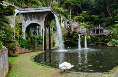 Montes Botaniska trädgård, Madeira
