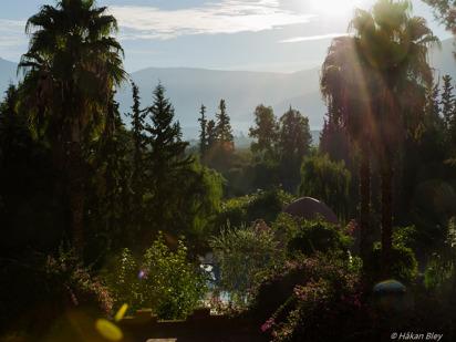 Morgon över Atlasbergen. Afourer.