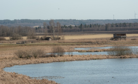 Sjön Kvismaren, med mycket fågel, ligger alldeles intill