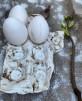 Porslinsfat till 9 ägg