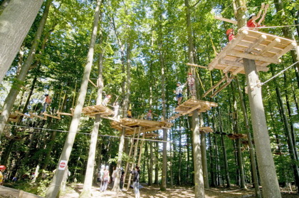 Adventure Park Forest