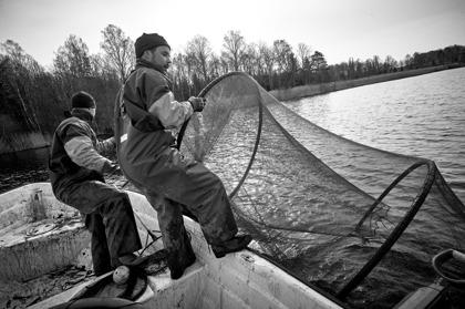 Reduktionsfiske med mindre ringryssja, Klara vatten. Foto: Hans Runesson
