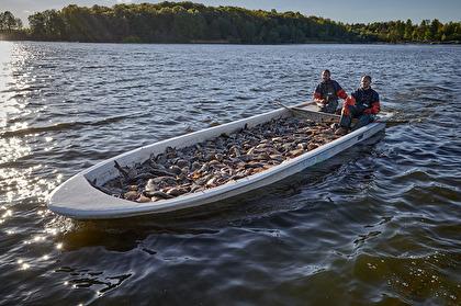 Reduktionsfiske med bottengarn, Klara vatten. Foto: Hans Runesson