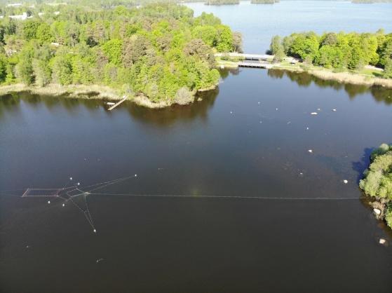 Reduktionsfiske med bottengarn, Klara vatten: Foto: Hans Runesson