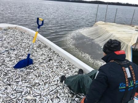 Notdrag på 7,3 ton under ett provfiske i Oppmannasjön
