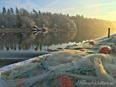 Klara Vatten notfiske Ivösjön 2018