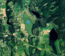 Satellitbild över Sirsjön innan vårdfisket 2017. Om man inte kännt till att sjön finns där hade man kunnat tro att det är en grön åker istället för en sjö.