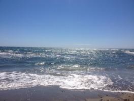 Adjö mitt vackra Medelhav