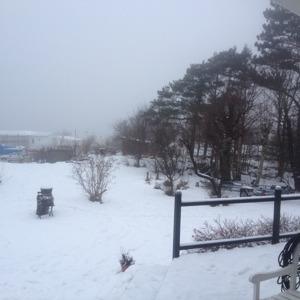 Dimman har tagit bort Brattön i horisonten...