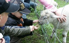 Besök vår djurhage, gå trollvandring, besök Svingelskogen och mycket mer.