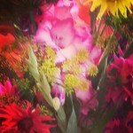 InstagramCapture_f4cdd567-4bf7-4ce7-9b1e-6e53ef12c844