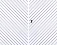 Tvåbladig slagport med ifyllnad av T - 10-plåt, diagonal mönsterläggning