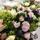 Honnör bordsdekoration Vår, vitsippor, luktärt, daggkåpa, pärlhyacinter. Miljövänlig och ekologisk dekoration.