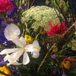 Närbild på en Iris i blomsterdekoration av Florist Marinette under blomsterbinderitävlingen Florisera 2016