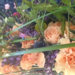 Närbild på solfjäderns blommor, nejlika, limonium, gräs