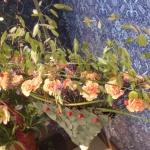 Miljömedveten och återvinningsbar botanisk solfjäder dekorerad med blommor och gräs. Florist Marinette Månsson Varberg Halland