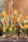 Detaljbild av Bellman bordet av blomsterdekoratören Veronica Norrgård