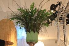 Helt underbart ljuvlig grön dekoration av florist Nicklas Jensen