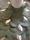 Undersidan till den hjärtformade brudbuketten klädd med eucalypthusblad och gräs