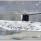 I snöstormen är ett isflak samlingsplats