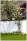 Vackra tulpaner i Säteriets trädgård