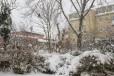 Promenad i snöyran