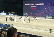 171202 Ponnykur var jättekul att se, vad de rider bra våra ponnyekipage i landslaget :) Lovar gott för framtiden !