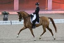 171204 Marina Mattsson och superfina Quartermain vinner Int 1 Kur. Foto ?