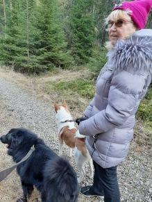 200217 Stormig långpromenad med mamma och hundarna.