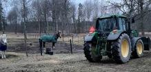 22 feb Hästarna kollar in traktorn :)