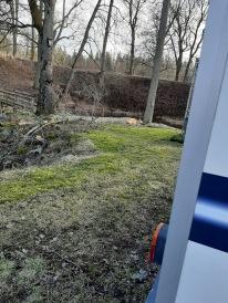 22 feb Träd fallit nära bussen.