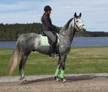 200506 Lisa Å S med Prochorus LÅS var första ekipaget säsongen 202o !  Han är till Salu !!