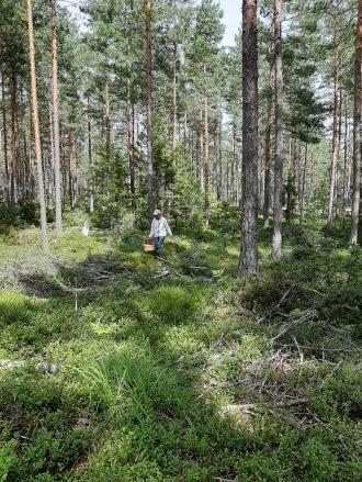 200830 Mamma i skogen idag :)