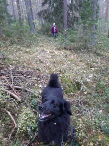 200101 Mamma bland träden. Och Aramis.