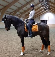"""Carolina Mörk hade även hon med sig två hästar. David och så denna fina 3år gamla """"Lillebror"""""""