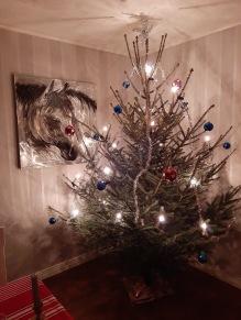 201223 Årets Julgran !
