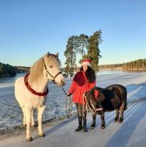 Sol och Rimfrost blev perfekt för julkänslan idag !