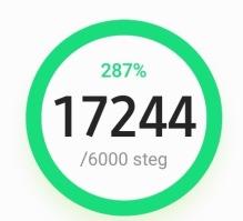 Det gäller att gå mycket när man har träningar så man inte fryser. Å går det gör jag :)