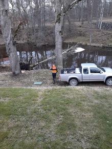 210315 Städare 1 (Lars) ska fixa trädet idag.