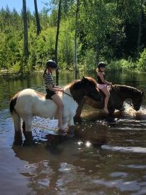 Agnes och AmandaLi svalkar sig efter träning. Hästarna njuter verkligen :).