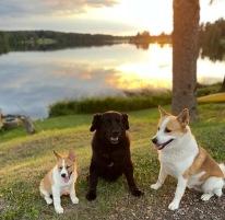 210708 Alla tre på samma bild :)