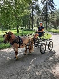 210708 Maria och Icaroz var här och dressyrade på banan med vagn. Superkul träning :).