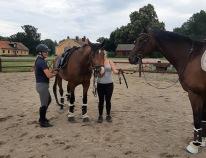 210709 Camilla Berg med 2 hästar och Groomen Irma kom på fm och tränade.