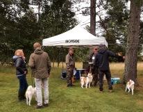 Vi var i sällskap med Götes uppfödare å de hade rutinerat med sig alla möjliga bekvämligheter som vi glatt nyttjade :).