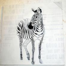 Zebra-tavla  77x77cm