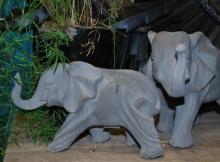 För elefantälskaren